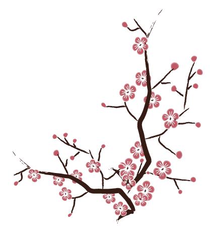 cherry blossom free vector